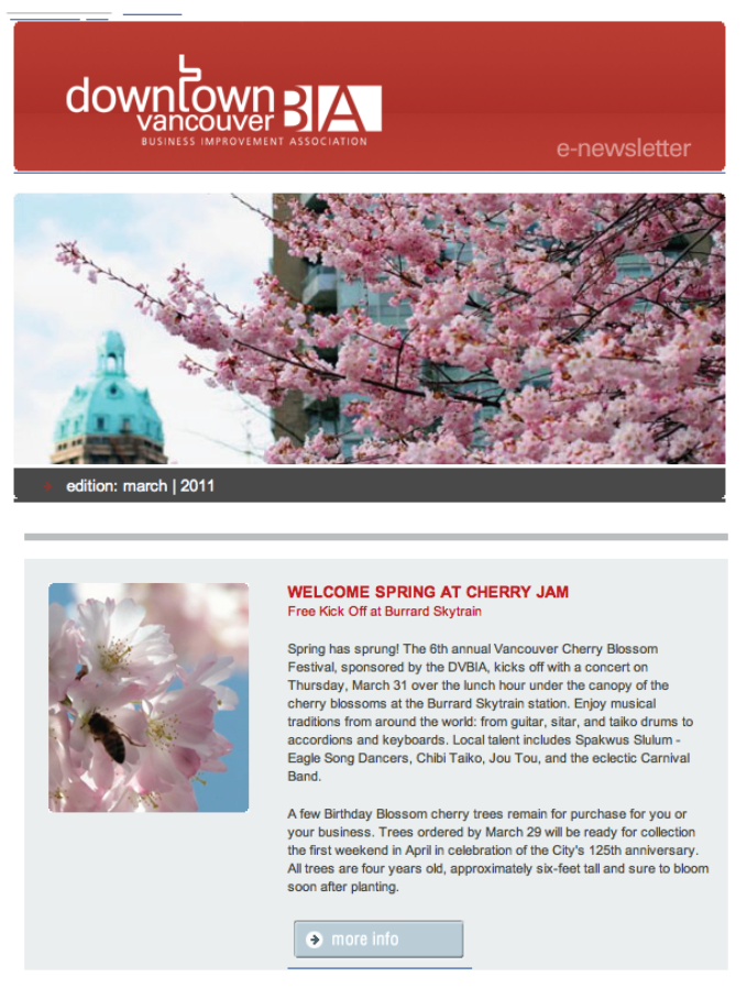 DVBIA E-Newsletter – March, 2011